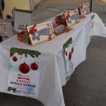 La Longobarda Salerno sostiene l'AILR 4