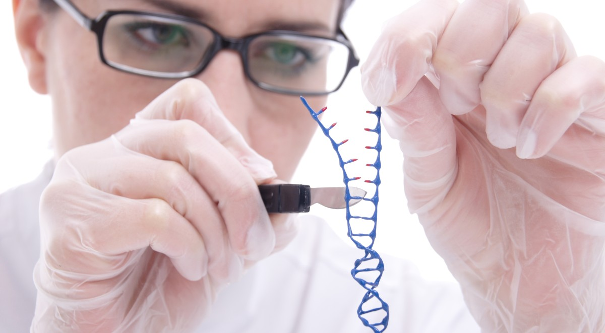 P53 e Rb: i geni responsabili del retinoblastoma